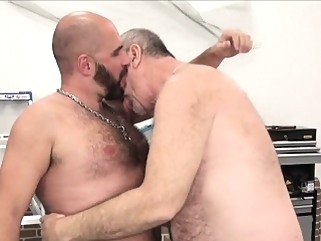Silver wolf fucks bearded bear raw bareback (gay) bears (gay) blowjob (gay)